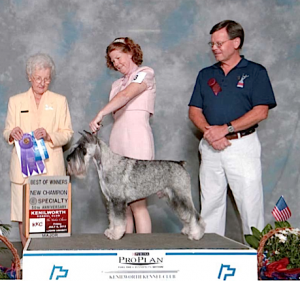Leslie Shriner with Champion Standard Schnauzer