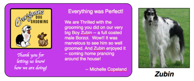 Michelle Copeland loves Georjeans Dog Grooming Warrenton, Virginia