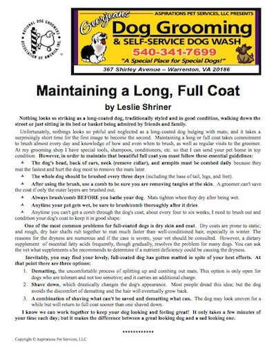 How to Maintain a Long Full Coat for Your Dog