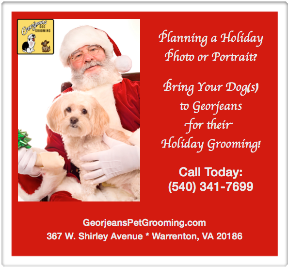 Home Holiday Care For Dogs