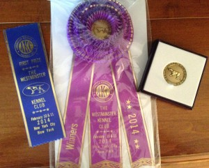 Frodo's Westminster Dog Show Ribbons