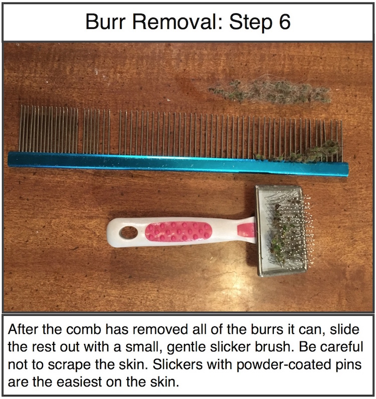 Burr Removal Step 6